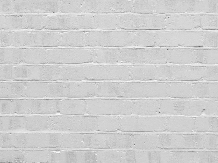 Paint drying on a brick wall.