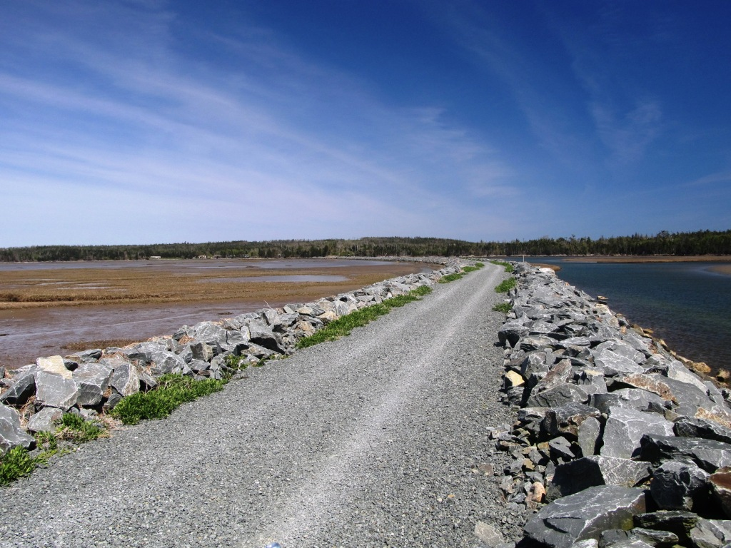 Picture of wide gravel path through a marsh, to trees several kilometers away.