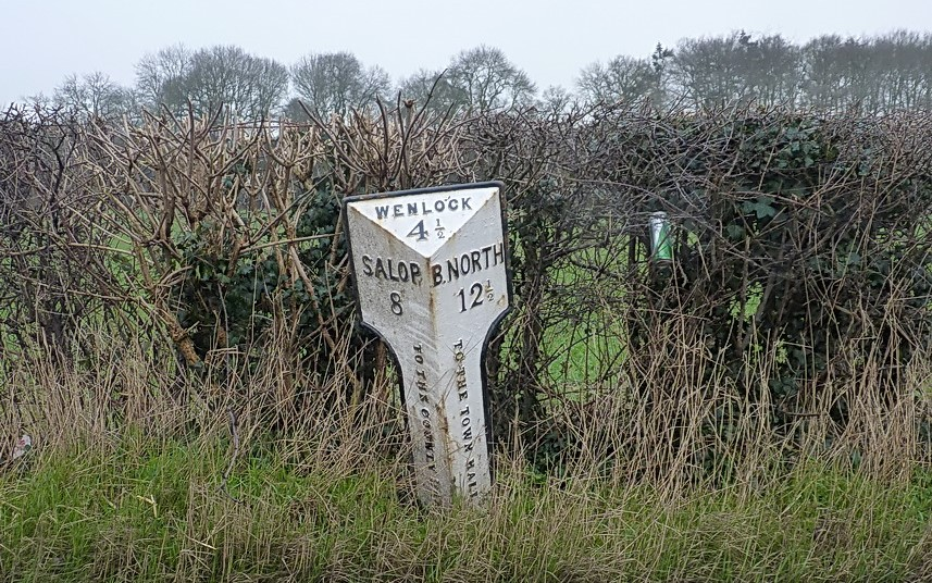 Old milepost alongside an road in England. Behind it is a woody hedge, and a discarded drink can is visible in the hedge branches.